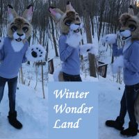 1387292013-goldcat_winter_wonder_land